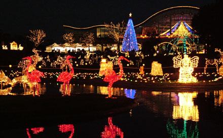 2005光の動物園1