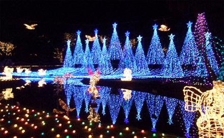 LEDブルー&ホワイトのツリーが並ぶ水辺のイルミネーション